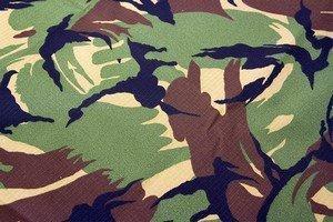Camouflage Netherlands (NL)